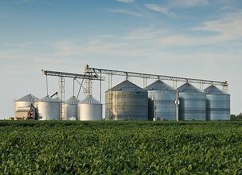Bowman v. Monsanto