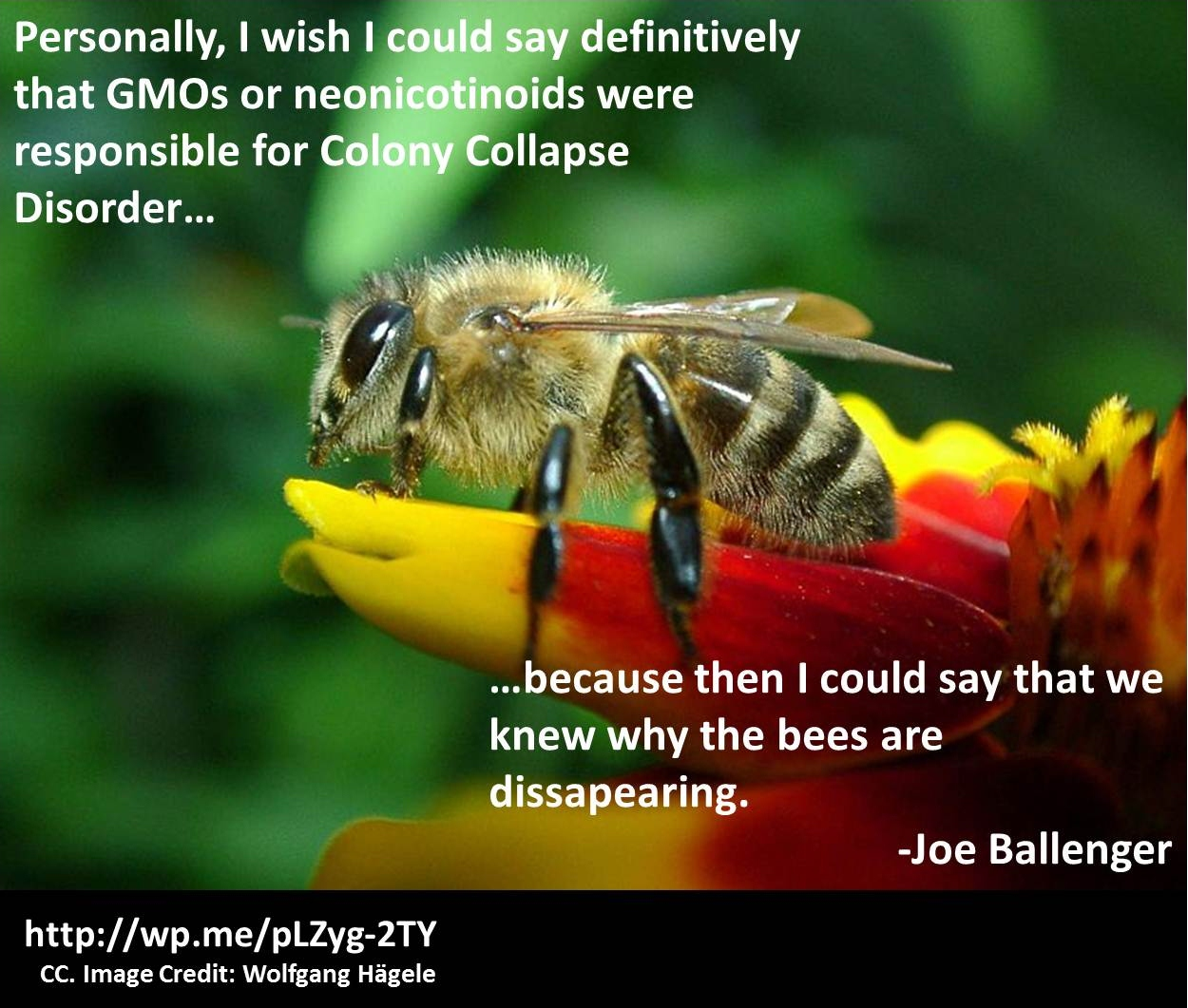 Colony Collapse Disorder: An Introduction
