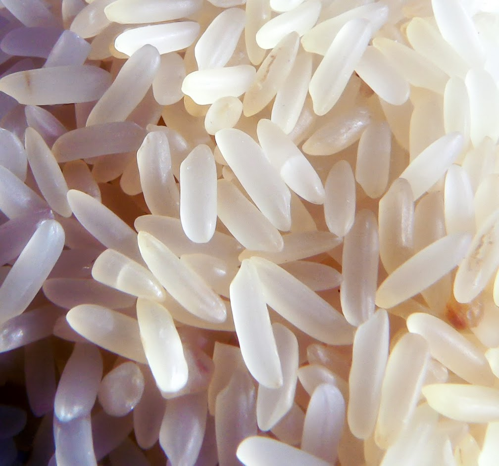 Natural GMOs Part 165. Novel double-stranded RNAs get served up in many conventional crops — such as rice.