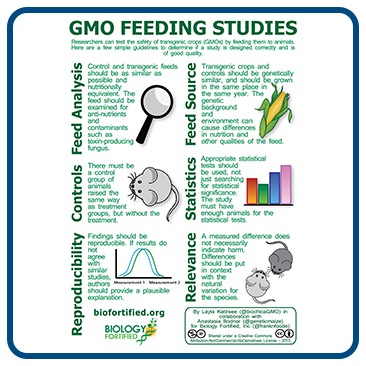 Infographic: GMO Feeding Studies