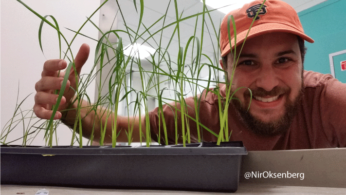 Bonus selfie: Nir and his rice. #GMOselfie