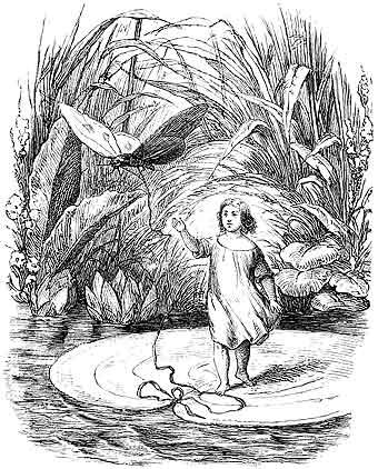 Pulgarcita en la primera edición ilustrada de los cuentos de Andersen (1849)