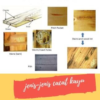 caat kayu bisa diatasi dengan dempul kayu