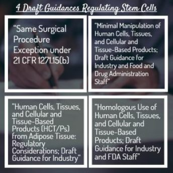 FDA Regulation Stem Cells