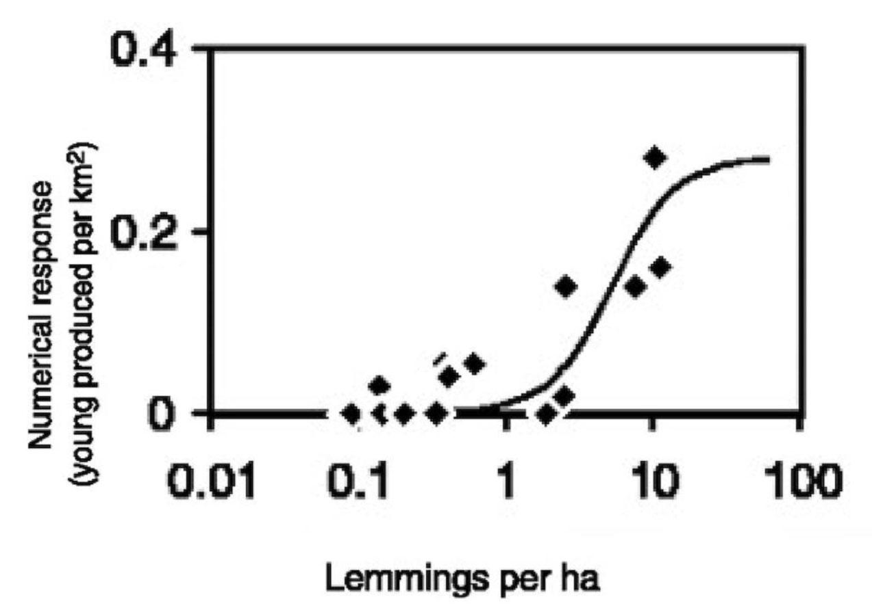 Predator Prey Relationship Dynamics