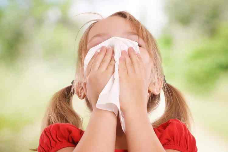 Le rhume des foins risque important entre 8 et 20 ans