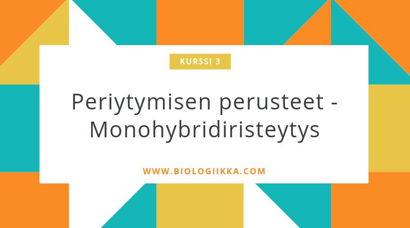 periytymisen perusteet monohybridiristeytys