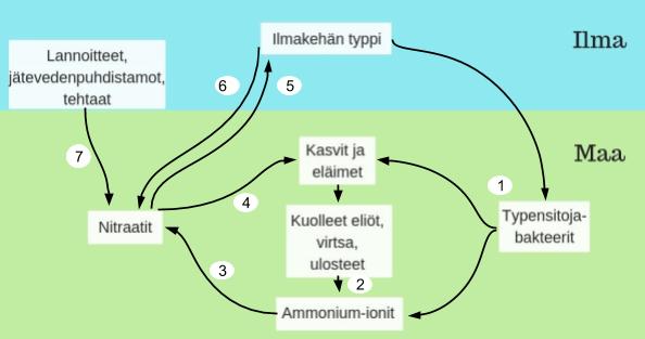 Abioottinen Typensidonta