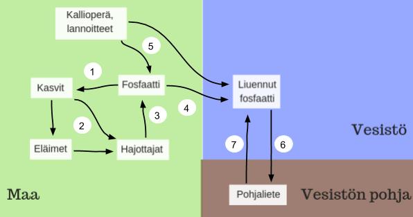 fosforin kierto