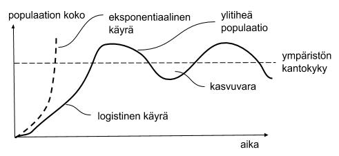 populaation kasvu