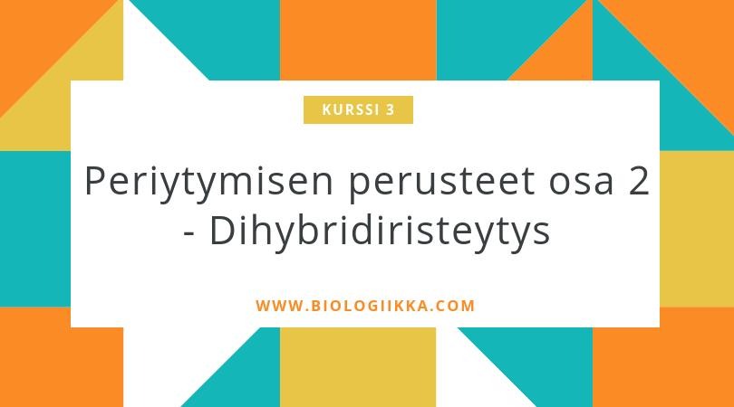 dihybridiristeytys