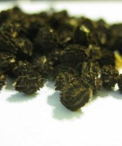 Graines séchées de fruit de papaye riche en antioxydants et anticancer