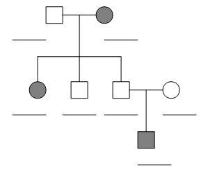 Pedigrees Practice Answer Key