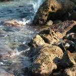 Περιβαλλοντικό Έγκλημα στο Ρέθυμνο