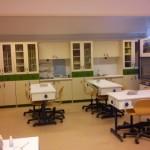 Εργαστηριακές Ασκήσεις Βιολογίας Γυμνασίου – Λυκείου – ΕΠΑΛ