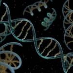 Τρισδιάστατος χάρτης του DNA.