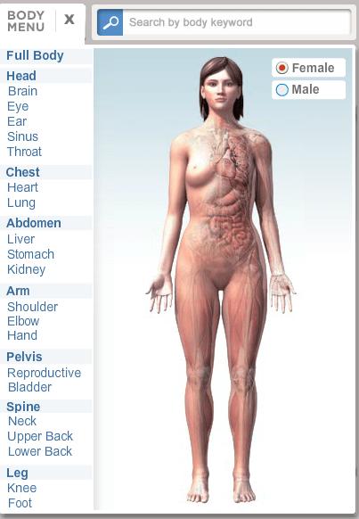 Body Maps_3D Models