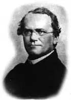 Mendel 1862