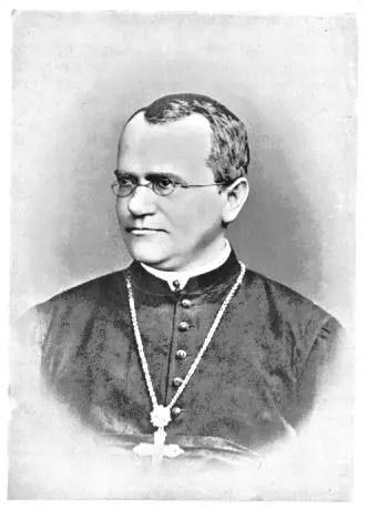 Mendel 1880