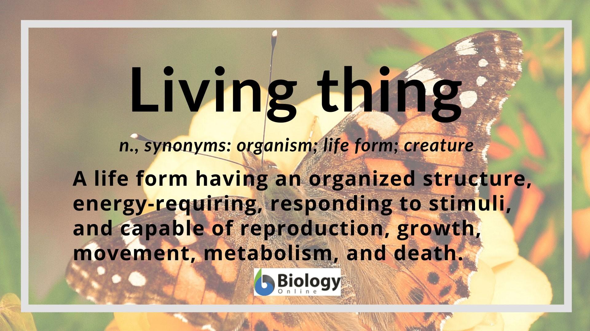 Living Thing