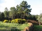 Menorca cuenta con 269 parcelas de agricultura ecológica