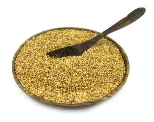 Quinua el cereal sagrado de los incas
