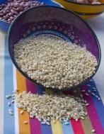Recetas internacionales con arroz