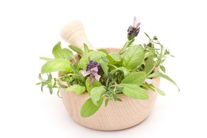 Plantas, medicinas en tu jardín