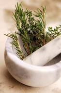 Técnicas de empleo de las Plantas Medicinales