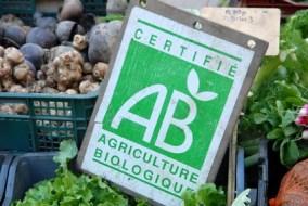 ¿Qué es la agricultura ecológica?