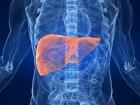 Cinco Consejos para la Salud del Hígado