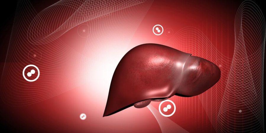 脂肪肝只是肝臟胖? 不治療恐癌化