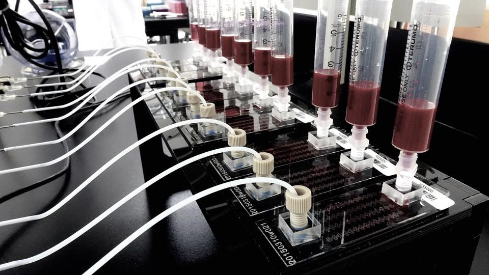 檢體放入檢測平台,進行處理與分析 (3)