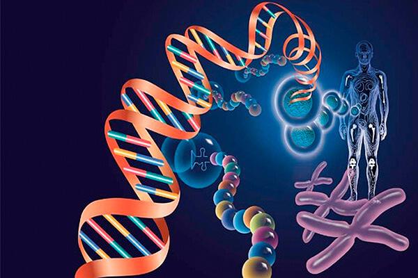 擁有亞洲特有基因資料庫 賽亞未來將進攻大陸市場