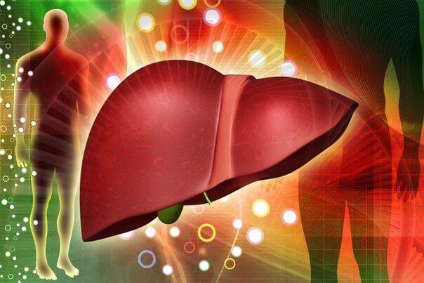 熱心捐血反篩出C肝 定期健檢揪出肝病