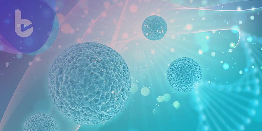 中研院揪出癌細胞轉移關鍵基因!