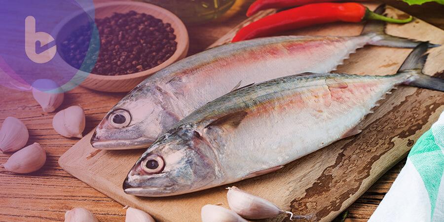 日本研究:若不吃魚,死亡率高將近2倍