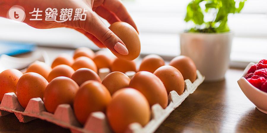 吃到芬普尼毒蛋別害怕!營養師教你四招降低風險