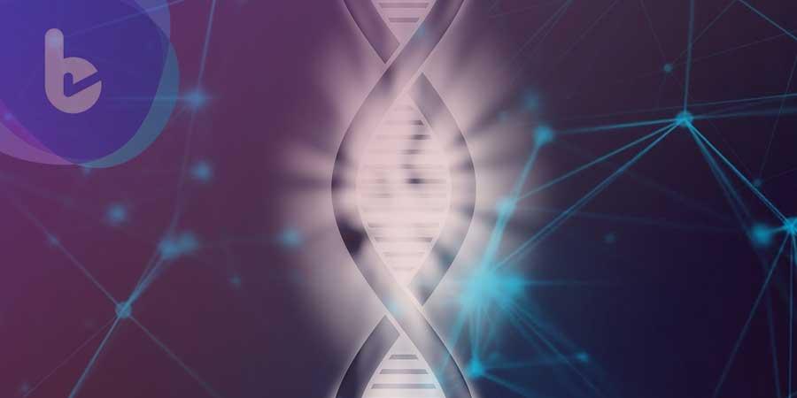 PNAS:哈佛學者發現基因療法 舒緩腎衰竭等「老病」