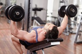 collagen powder for muscles