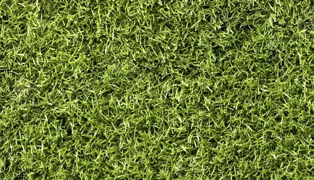GrassGreenTexture0006