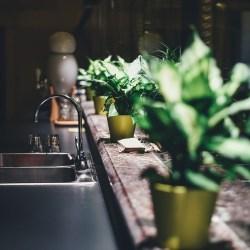 cultiver épice à la maison