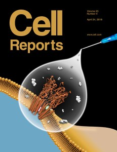 Cell Reports April 2018