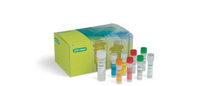 singleshot-cell-lysis-kit