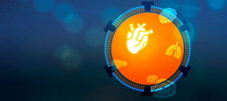 Apolipoproteins as Biomarkers in Heart Disease and Beyond