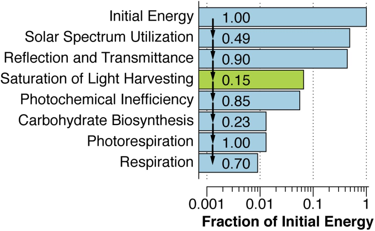 Write The Overall Equation For Photosynthesis In Both