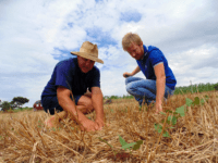 Devonzil e o técnico do IBS fazem o monitoramento da lavoura de soja