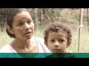 Como agricultores no Brasil estão triplicando sua renda e se tornando mais sustentáveis