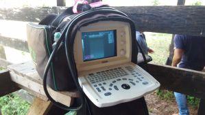 Aparelho de ultrassom usado para o diagnóstico de gestação dos embriões.