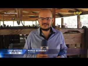 Projeto do Sebrae executado pelo IBS é destaque do programa Loop Notícias